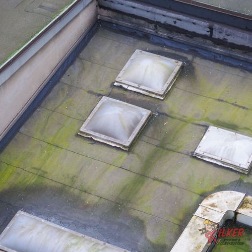 Commercial Roof Inspections Can Uncover Problems Like Algae and Mold Growth.
